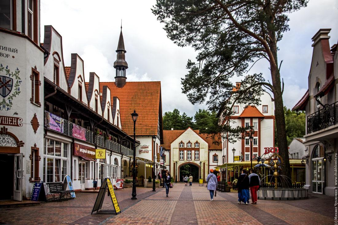 выбор светлогорск калининградская область фото города именно