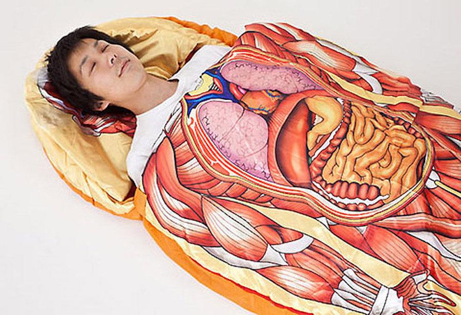 Анатомия картинки приколы, днем рождения мужчине