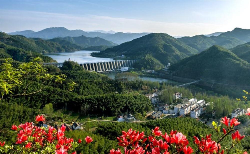 xinhua china anhui laian pond cypress scenery scenery - 1000×616